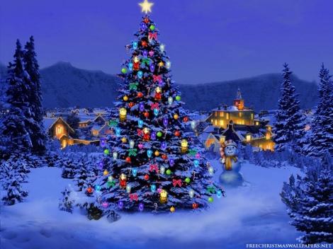 christmas-tree-nature1024-2264311